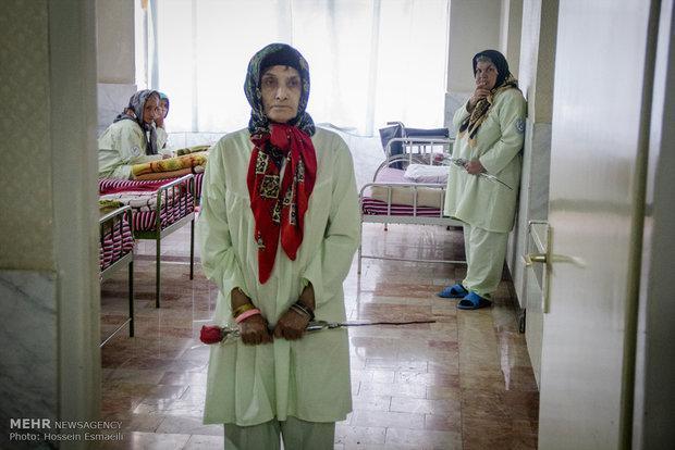 جمعیت سالمندان ایران تا یک سال دیگر 30 درصد افزایش خواهد داشت