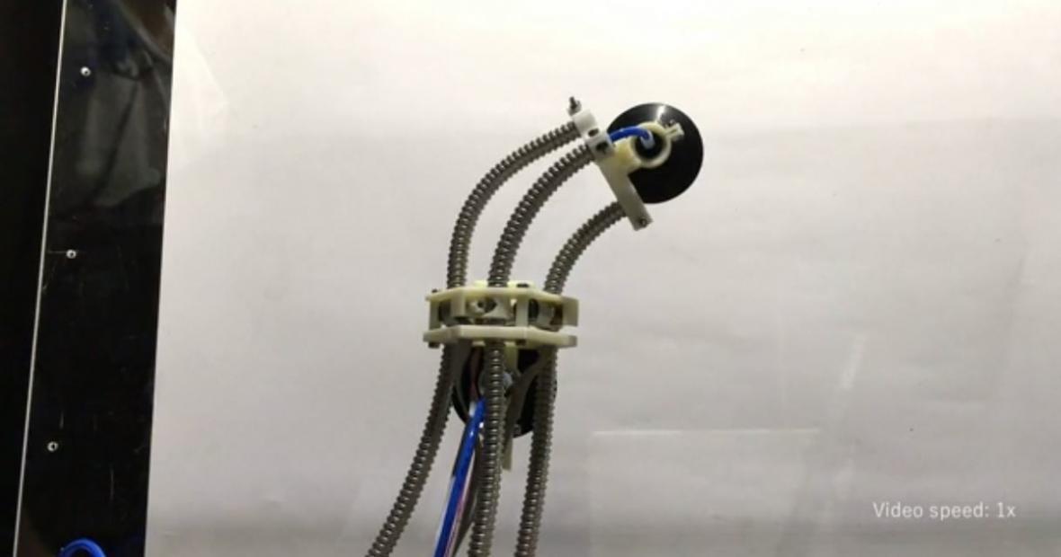 اولین روبات منعطف دنیا ساخته شد