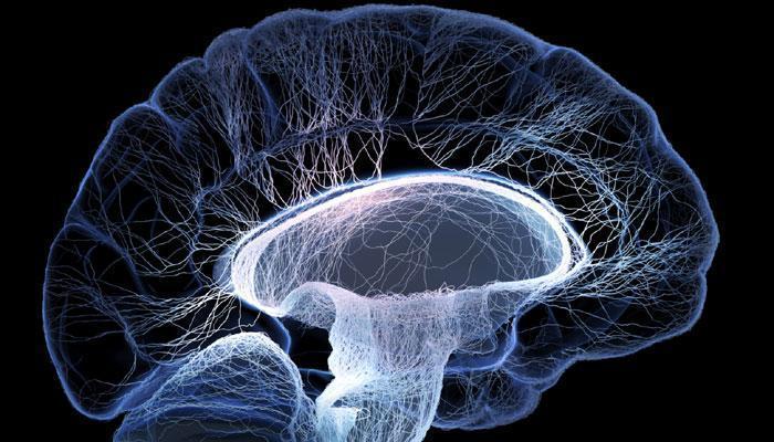محققان دانشگاه شریف حسگر نانویی برای تشخیص زودهنگام آلزایمر ساختند