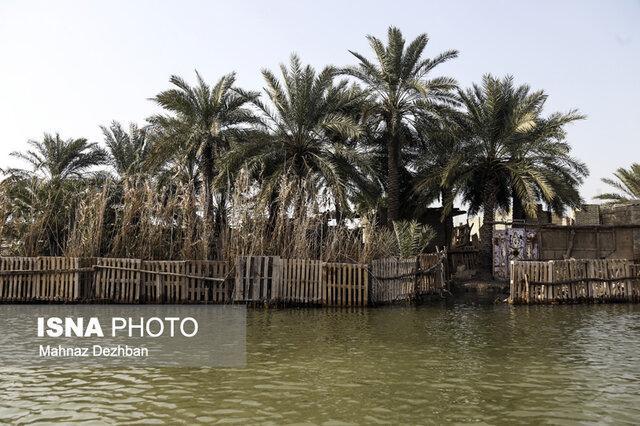 تالاب های خوزستان، از خشکسالی تا آبگیری