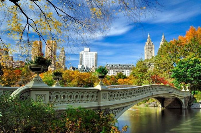تاثیر پاندمی کرونا بر املاک و فروشگاه های شهر نیویورک، اعلام متوسط اجاره بهای مسکن در سه ماهه اخیر، قیمت مسکن در برادوی چه تغییراتی نموده است؟