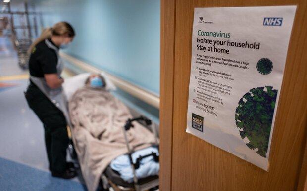 ویروس کرونا احتمالا مانند مسکن عمل می نماید!
