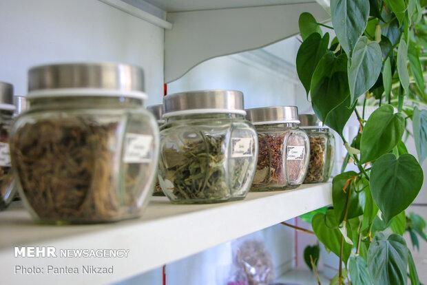 توسعه صنعت گیاهان دارویی با تدوین 7 استاندارد
